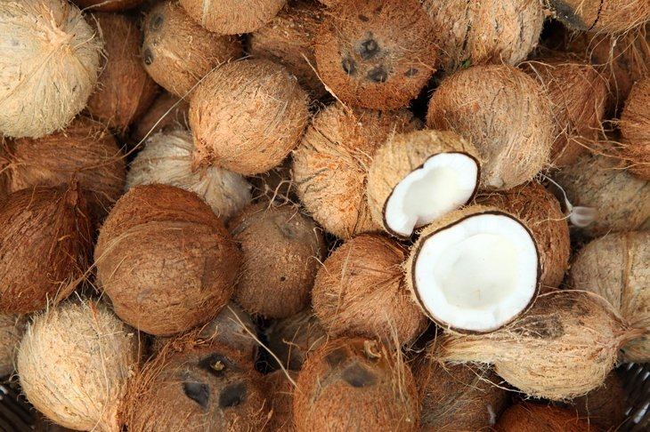 Everything You Wanted to Know About Coconut