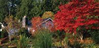 Fall Garden Maintenance