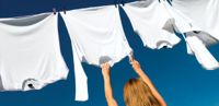 Celebrate Your Right to Dry