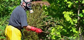 New Canadian Literature Review Warns Against Pesticides