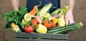 Slow Food in the Fast Lane