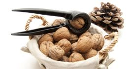 Gather ye walnuts while ye may