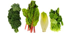 Leafy Greens and All Their Benefits!
