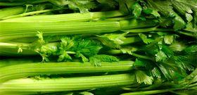 Take Stalk in Celery