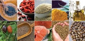 10 Indigenous Superfoods