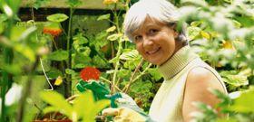 Treating Menopause Naturally