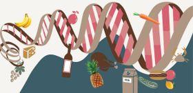The Nutrigenomics Frontier