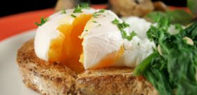 Egg-celerate Your Day!