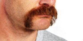 Gear up for Movember!