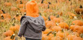4 Unique Ways to Cook with Pumpkin