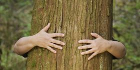 10 Eco-Friendly Lifestyle Changes for World Environment Day