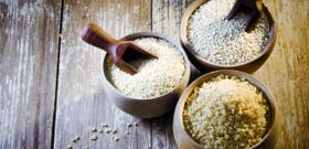 Meatless Monday: Complete Vegetarian Proteins