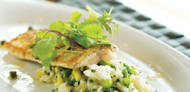 Pan-Seared Whitefish with Sweet Pea and Corn Risotto