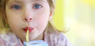 Picnic Ice Milk or Sorbet