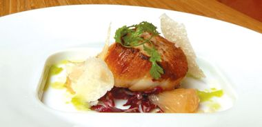 Seared Scallops with Pink Grapefruit and Radicchio