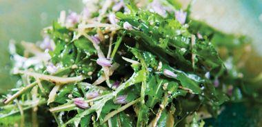 Salad of Wild Burdock Root with Hemp Oil Vinaigrette