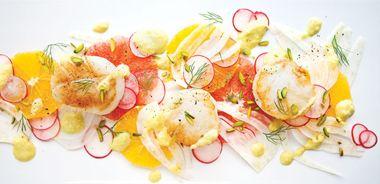 Seared Scallop, Fennel, and Citrus Salad