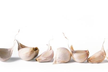 Gardening With Garlic