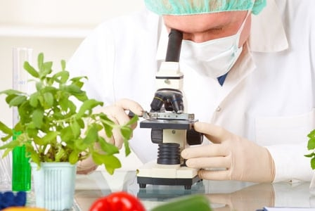 World's Healthiest Meal Achieved through Science