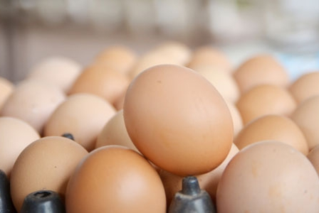Crack One Open Because Today Is World Egg Day!