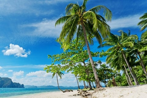 Another Reason to Go on Vacation this Winter? Sunlight May Prevent Allergies and Eczema