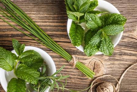 Kitchen Corner: Storing Fresh Herbs
