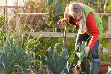 """Nature's Path Plants It Forward With """"Gardens for Good"""" Grant Program"""