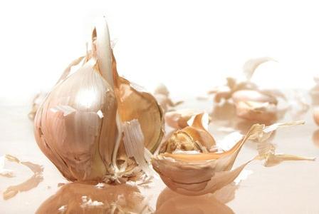 Enlist Garlic