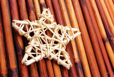 starfish design over bamboo branches