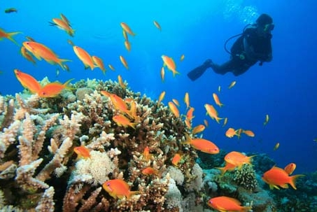 June 8 is World Oceans Day