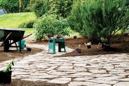 Preparing Your Garden for the Growing Season