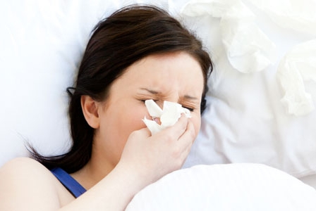 New Research Shines Spotlight on Echinacea for the Flu