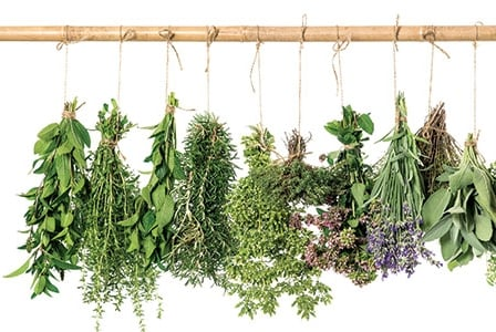10 Surprising Uses for Herbs