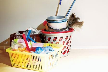 Household Health Hazards