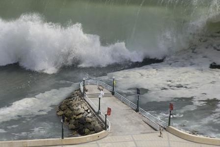Tsunami Debris Sparks Concerns Over Invasive Species