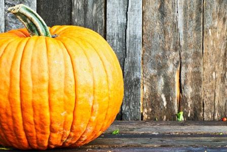 Forget Pie! Here are 5 Unique Ways to Enjoy Pumpkin