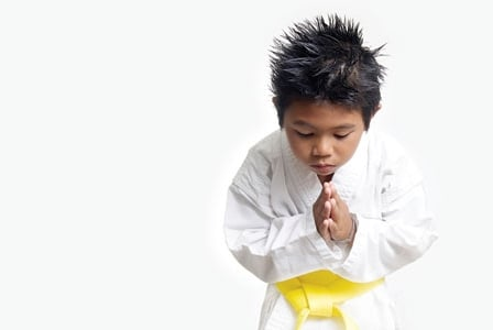 Martial Arts For Munchkins