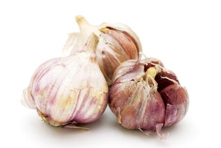 Great Garlic!