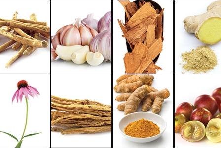 10 Immune-Boosting Superfoods
