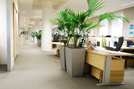 How's the Indoor Air Quality at Your Office?