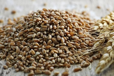 Meatless Monday: Great Grains