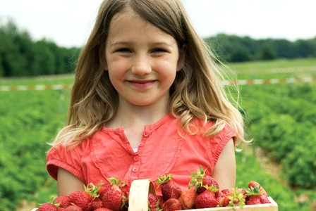 Try These Tasty Canadian-Grown Fruits This Summer