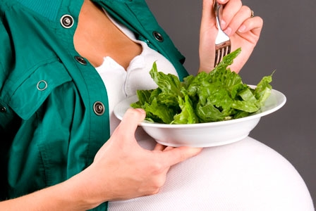 Optimal Nutritional Supplementation for Pregnancy