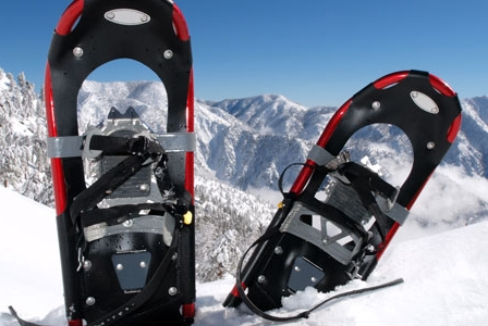 Go Snowshoeing!
