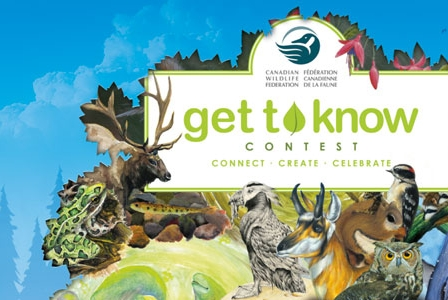 Get to Know Your Wild Neighbours with Robert Bateman Contest