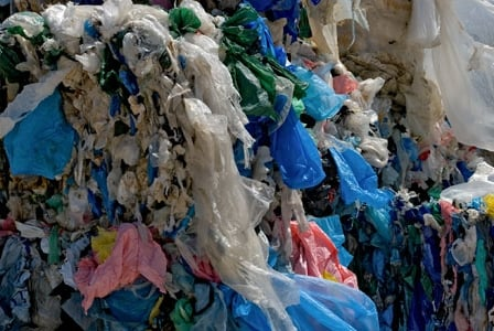 Plastic Bag Bans Continue to Grow in Popularity