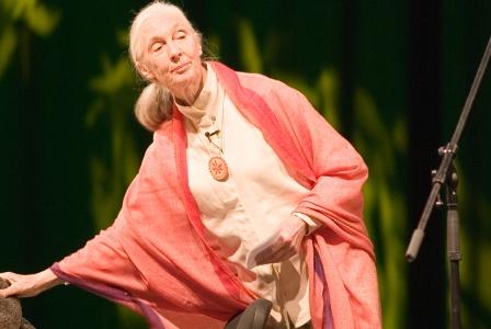 Wildlife Wednesday: Jane Goodall Sows Seeds of Hope