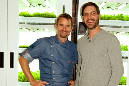 Get Über-fresh Greens from Urban Cultivator and the Living Produce Aisle