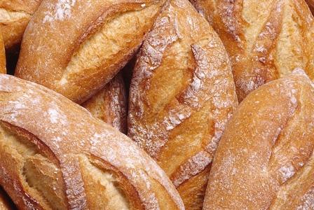 Organic Wheat You Can Eat