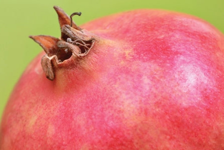 Fear Not the Pomegranate